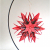 Origami, Star, Black and Red, Ornament Stand, Paper